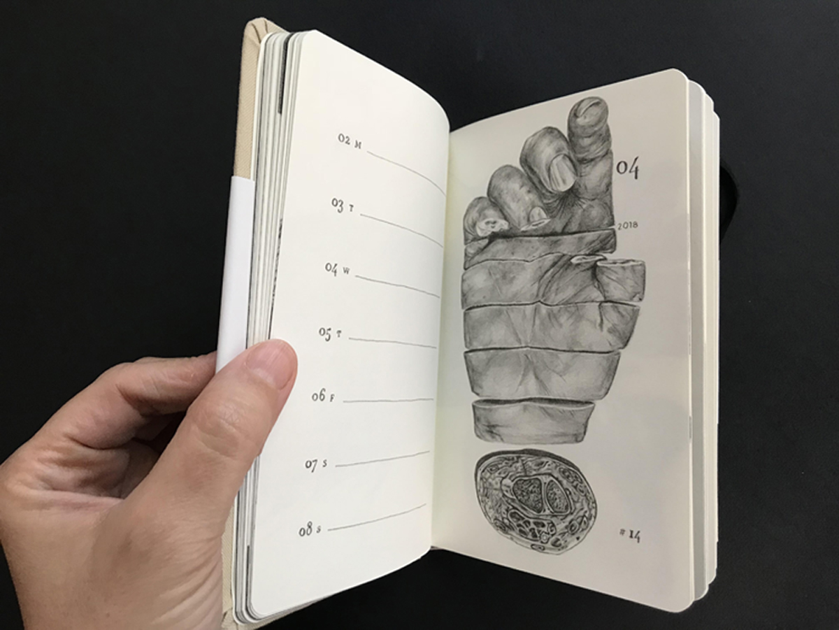 2018 weekly year planner and artist book